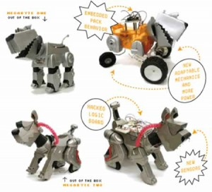 Feral Robotic Dog (2005-present: multimedia)